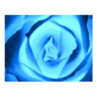Brote color de rosa azul tarjetas postales