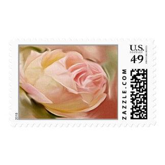 Brote color de rosa en franqueo de la lona sellos postales