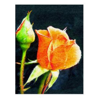 Brote color de rosa postales