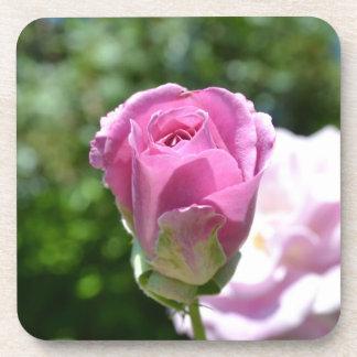 Brote color de rosa romántico posavasos de bebida