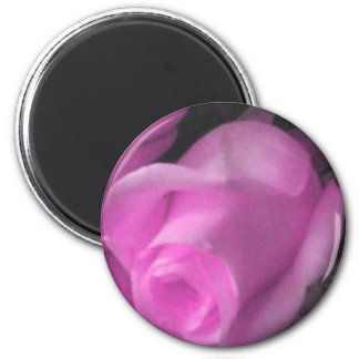 Brote color de rosa rosado 2 imán de 1/4 pulgada
