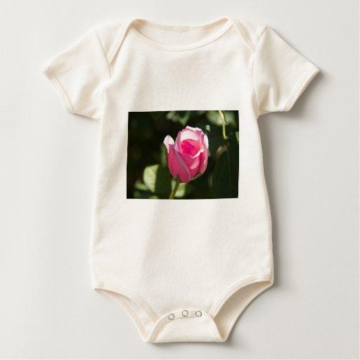 Brote color de rosa rosado body para bebé