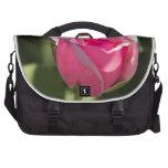 Brote color de rosa rosado bolsas de ordenador