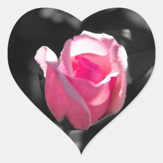 Brote color de rosa rosado BW Pegatina En Forma De Corazón