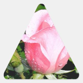 Brote color de rosa rosado con descensos del agua pegatina triangular