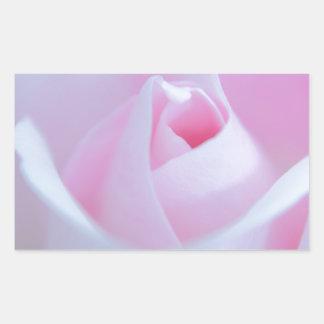 Brote color de rosa rosado creado por Tutti Pegatina Rectangular