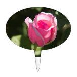 Brote color de rosa rosado decoraciones de tartas