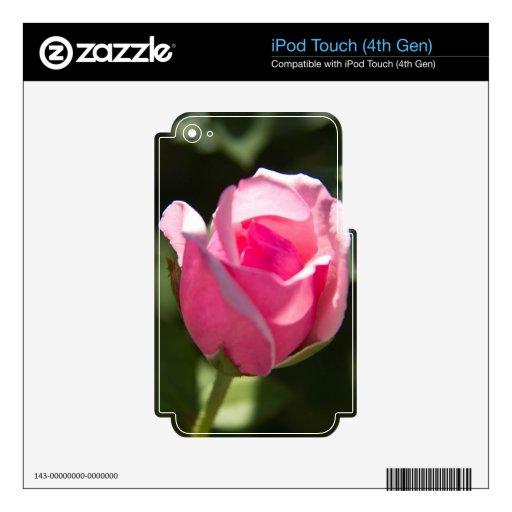 Brote color de rosa rosado iPod touch 4G skins
