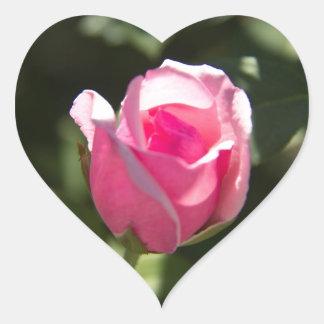 Brote color de rosa rosado pegatina en forma de corazón