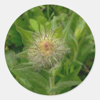 Brote de flor borroso pegatina redonda