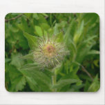Brote de flor borroso tapete de raton