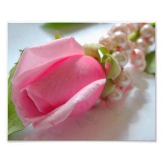 Brote de flor color de rosa rosado con el collar d fotos