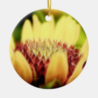 Brote de flor combinada ornamentos de reyes magos