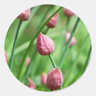 Brote de flor de la cebolleta pegatina redonda