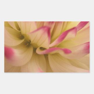 Brote de flor pegatina rectangular