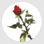 Brote del rosa rojo dibujado a lápiz etiquetas redondas