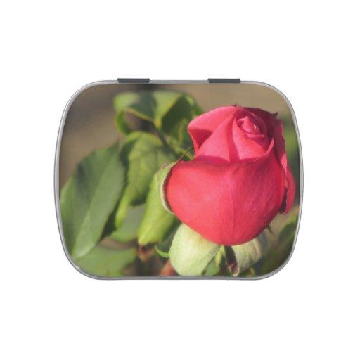 Brote del rosa rojo jarrones de dulces