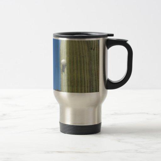 Brote del Saguaro Tazas De Café