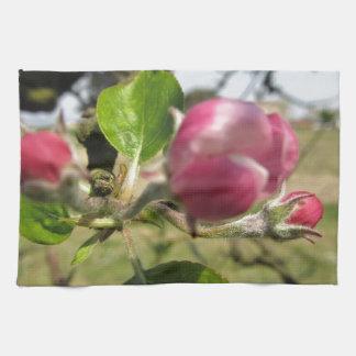 Brotes cerrados borrosos de la flor de la manzana toallas