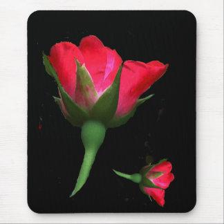 Brotes color de rosa alfombrillas de raton