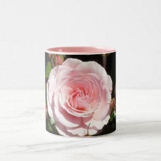 Brotes color de rosa rosados de florecimiento taza de café