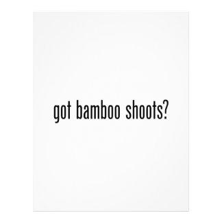 brotes de bambú conseguidos folleto 21,6 x 28 cm