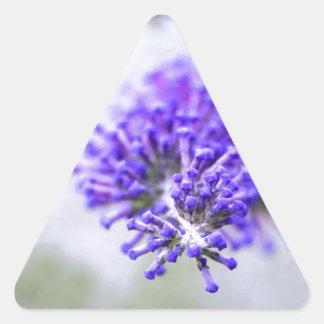brotes de flor púrpuras pegatina triangular