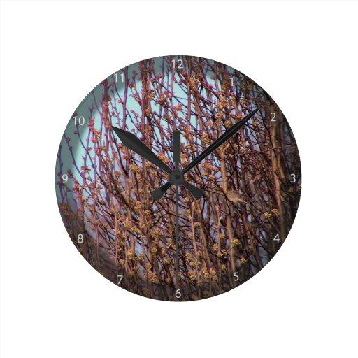 Brotes de la pera de Broadford Relojes De Pared