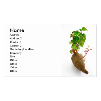 Brotes de la planta de patata dulce tarjetas de visita