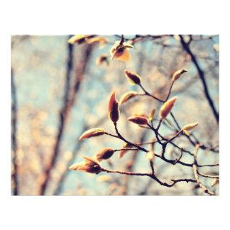 Brotes de la primavera tarjeta publicitaria