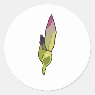 Brotes del iris etiquetas redondas