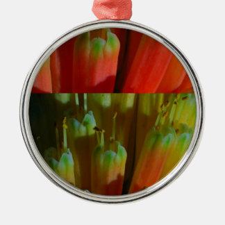 BROTES florecientes: Cactus salvaje:  Saludos, Adorno Redondo Plateado