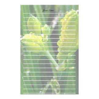 brotes verdes del lirio de la primavera  papeleria de diseño