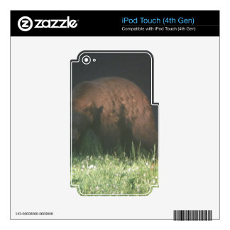 Brother Bear iPod Touch 4G Skins