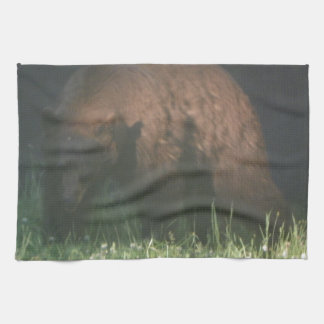Brother Bear Kitchen Towels