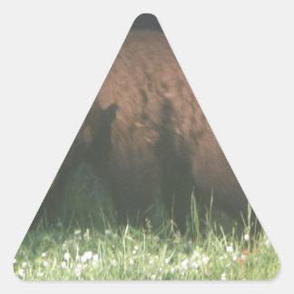 Brother Bear Triangle Sticker