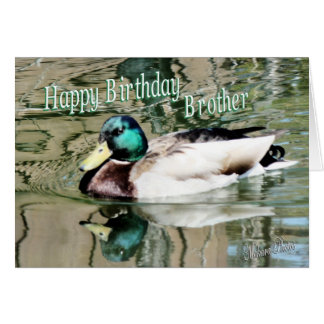Brother birthday-drake on the pond card