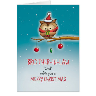 Brother in Law, owl wish you a Merry Christmas Card