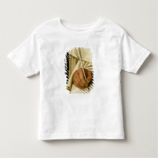 Brother Pedro Machado Toddler T-shirt