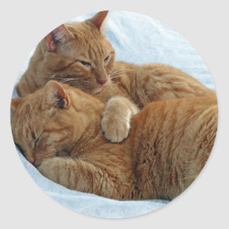 Brotherly Love Classic Round Sticker