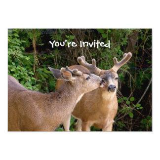 Brotherly Love Deer Bucks Card