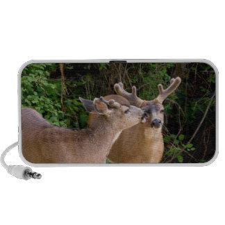 Brotherly Love Deer Bucks Mini Speaker