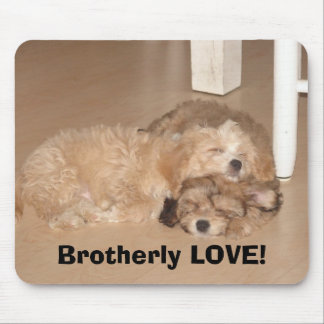 Brotherly LOVE! Mouse Pad