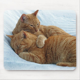 Brotherly Love Mouse Pad