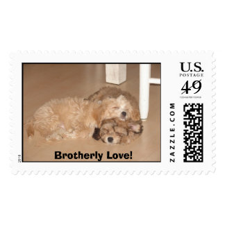 Brotherly Love! Postage Stamp