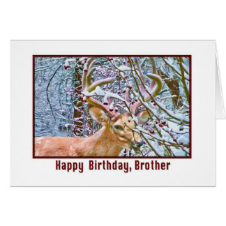 Brother's Birthday Card with Deer and Crab Apples