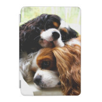 Brothers Cavaliers iPad mini Cover