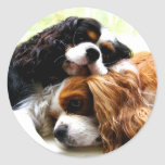 Brothers Cavaliers Round Stickers