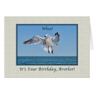 Brother's Laughing Gull Bird Birthday Card