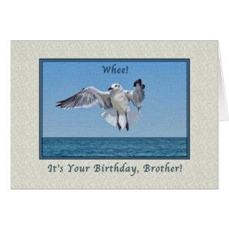 Brother's Laughing Gull Bird Birthday Card